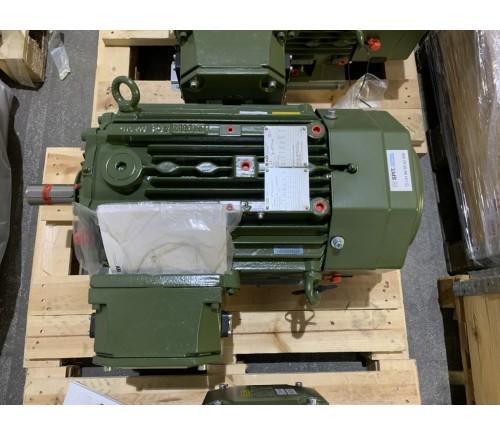 Explosionsgeschützte Elektro Motoren